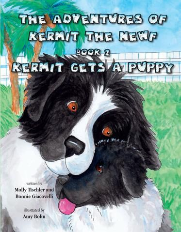 The Adventures of Kermit the Newf Book 2 Kermit s a puppy