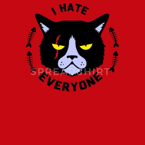 Snapback CapI Hate Everyone Funny Angry Cat