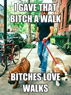 i gave that bitch a walk bitches love walks