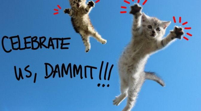 National cat day funny wallpaper