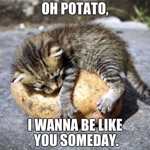Oh Potato I Wanna Be Like You Someday
