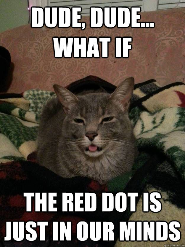 Dude dude what if The red dot is just in our minds