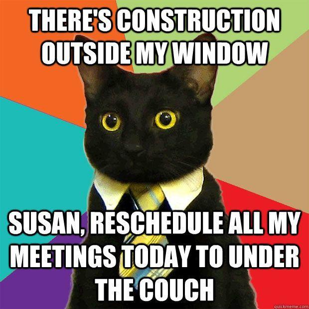 Black Cat Meaning Business Cat Meme Haha