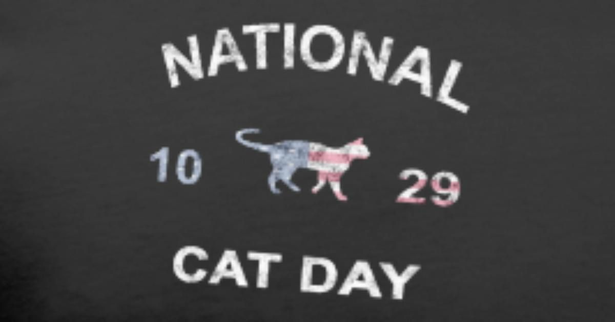 National Cat Day American Flag Funny Cat Lover Men s Premium T Shirt