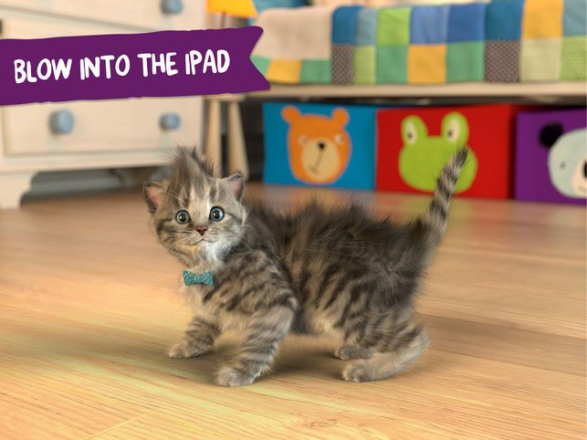 Little Kitten App on the App Store
