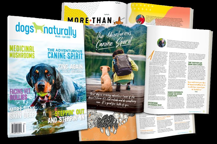 Grab your free digital copy of the world s best natural dog magazine