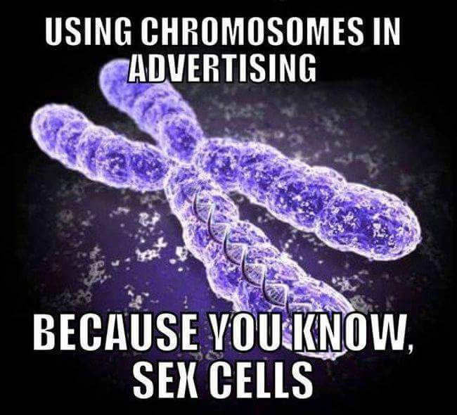 20 Geeky Memes That True Science Fans Will Understand and Love Cells joke