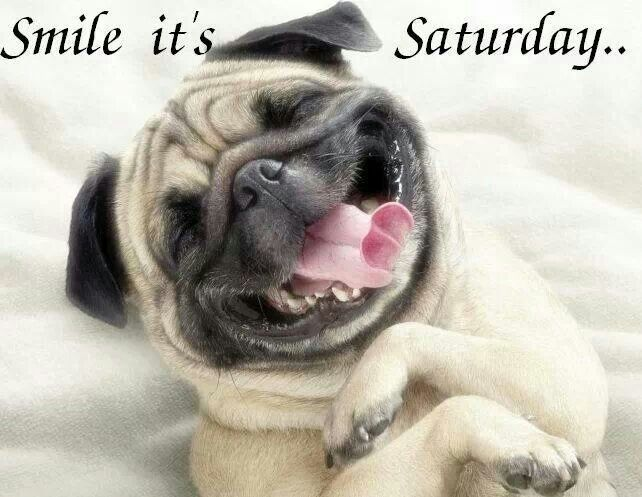 Smile its Saturday quotes cute quote morning puppy weekend minion saturday saturday quotes weekend quotes