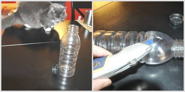 DIY bottle food puzzle
