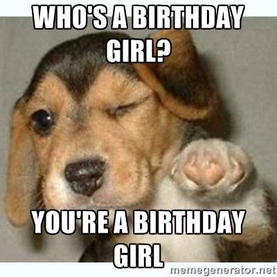 Who s a birthday girl You re a birthday girl fist bump puppy