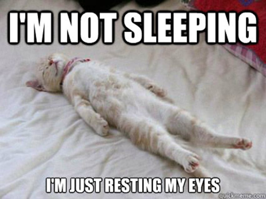 I Am Not Sleeping I Am Just Resting My Eyes Funny Meme For Whatsapp