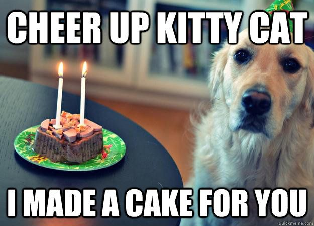 Cheer up Kitty Cat I made a cake for you
