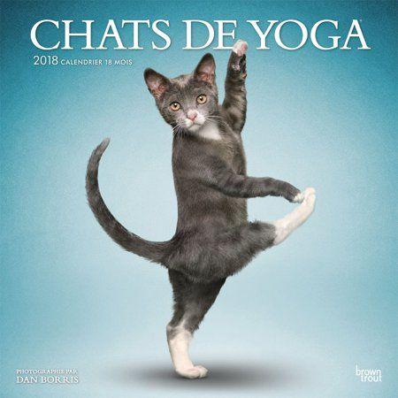 2018 Yoga Cats Wall Calendar Funny Cats by Wyman Publishing Walmart