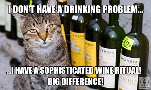 Wine Cat Problems
