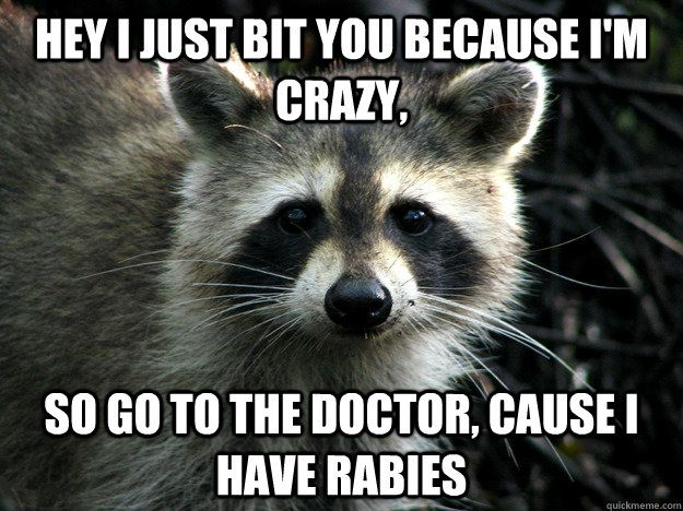 Hey I just bit you because i m crazy so go to the doctor cause i have rabies