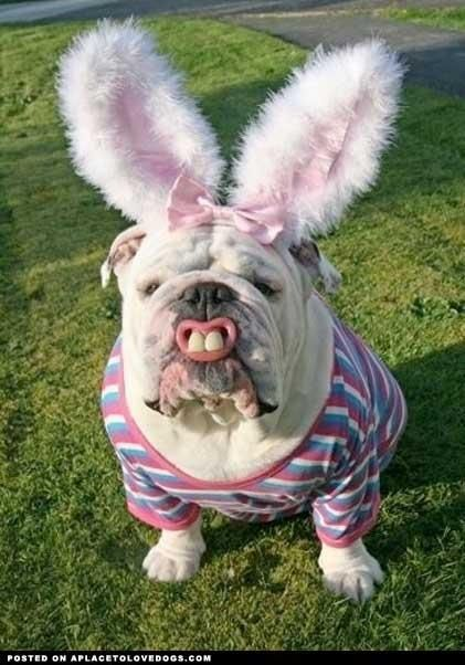 Happy Easter to all my friends and family