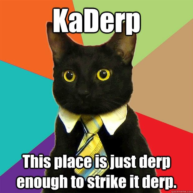 Get the Prodigious Funny Cat Derp Memes