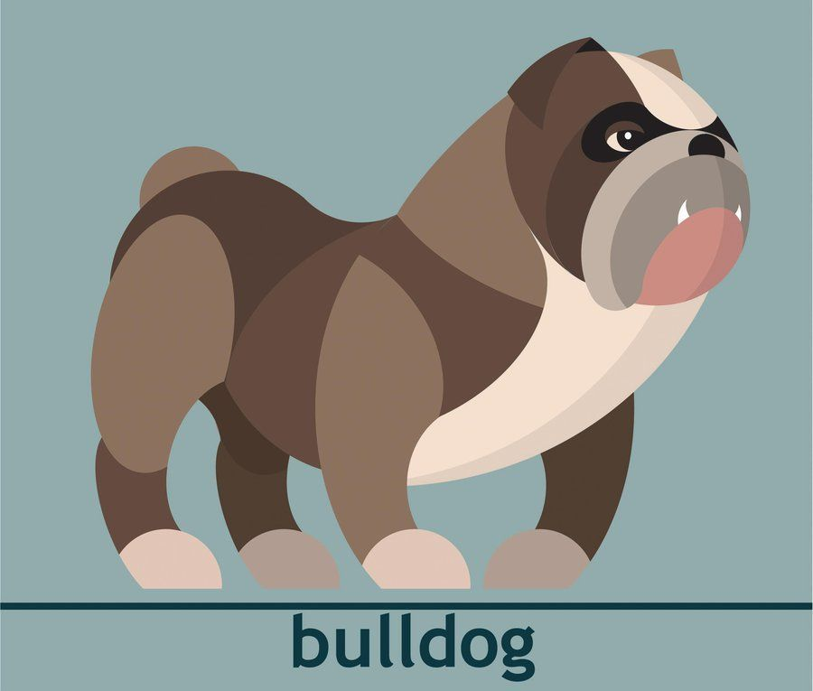 Bulldog Cartoon Bulldog Cartoon Funny Bulldog Dog ics Animal Babies Baby