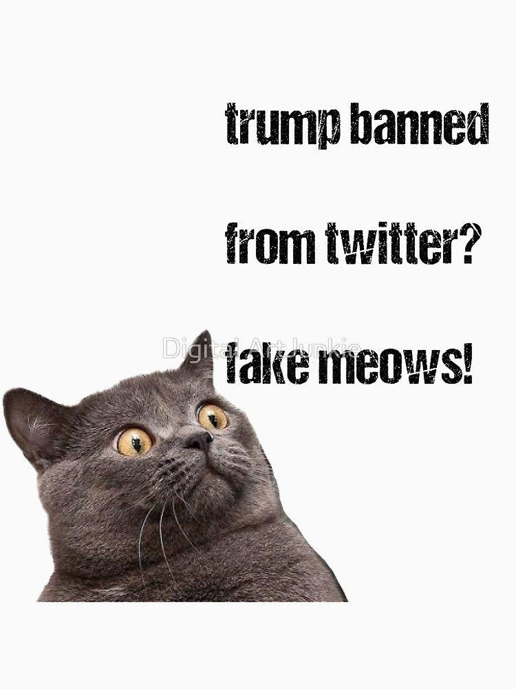 Donald Trump Funny cat Surprise Social media Culture Cat life
