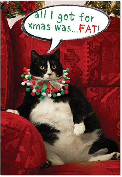 12 Got Fat Boxed Christmas Cards with Envelopes 4 63 x 6 75 inch Funny