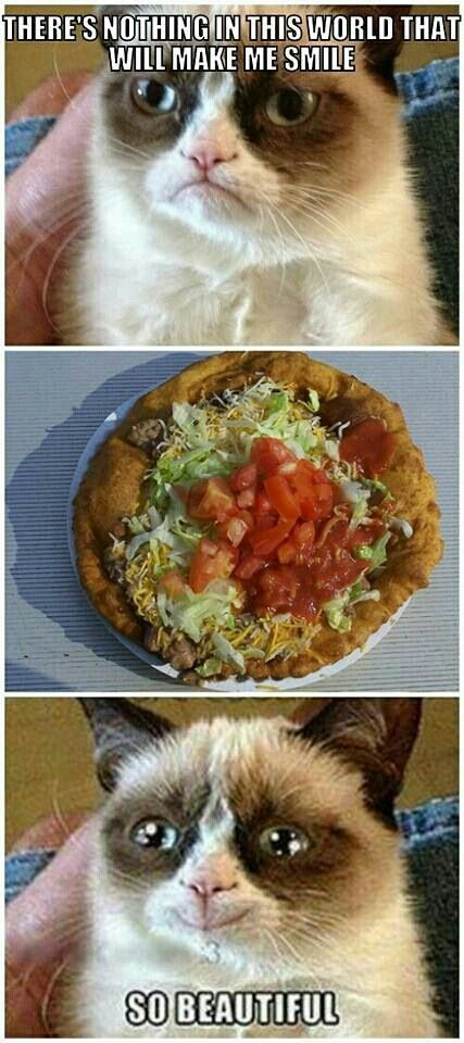 1000 About Grumpy Cat For Love