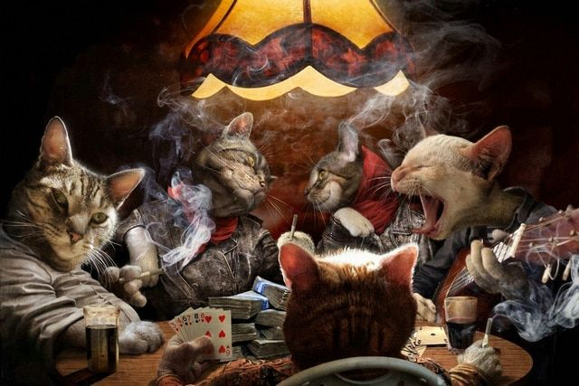 NICOLESHENTING Cats Playing Poker Cards Art Silk Fabric Poster Canvas Print 13x20 24x36inch Funny Home Wall Decor