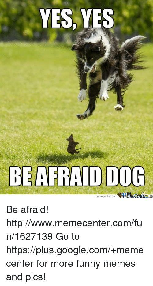 Memes 🤖 and Yes Yes YES YES BE AFRAID DOG memecenter