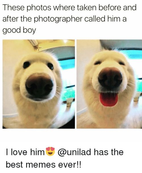 Funny Taken and Best Memes These photos where taken before and after the