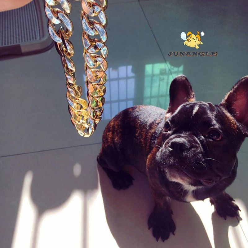 Plastic Gold Chain Cat Dog Necklace for Pet Small Dogs Collar Puppy Cat Funny Collars Pets Supplies Product French Bulldog Teddy in Collars from Home