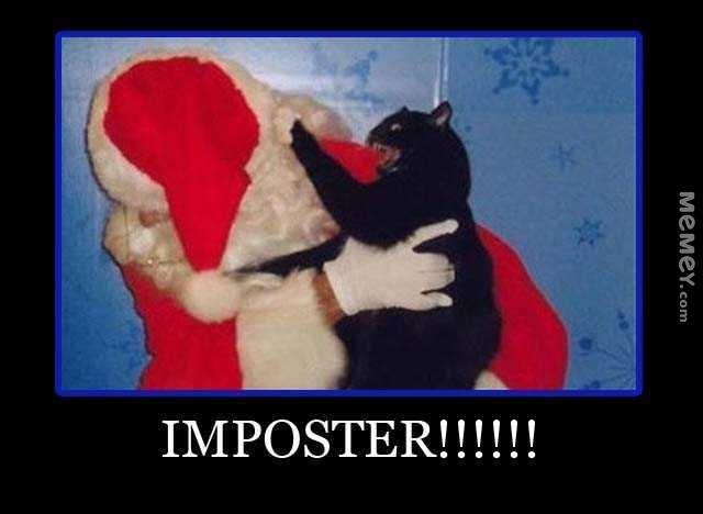 funny cat ing santa
