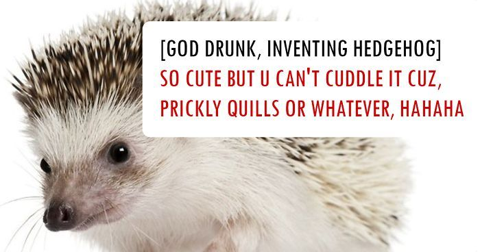 50 Hilarious Explanations How God Created Animals