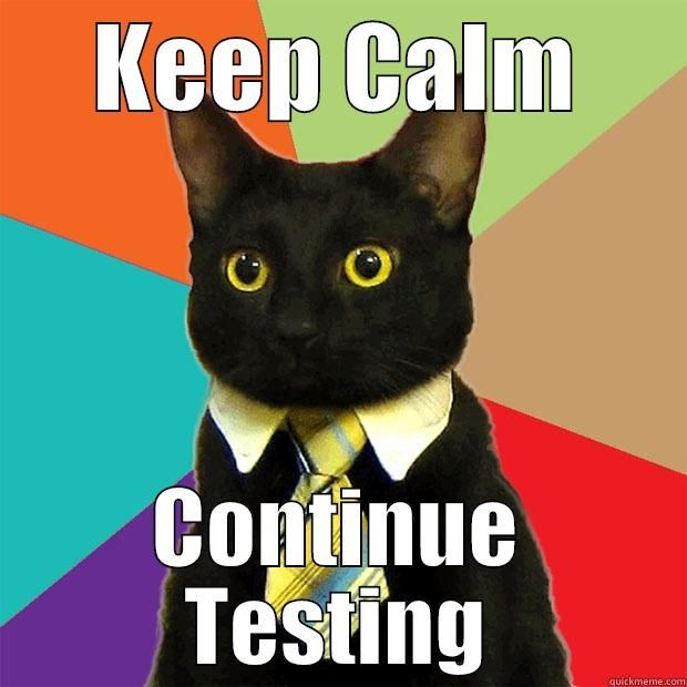 Keep Calm and Continue Testing KEEP CALM CONTINUE TESTING Business Cat