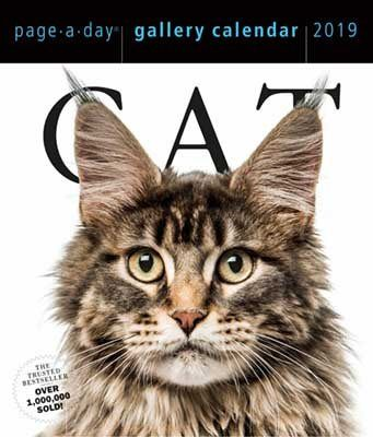 2019 Cat Gallery Page A Day Gallery Calendar