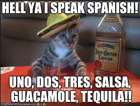 Afk for tequila playa del carmen mexico 446x337 Spanish girl memes funny
