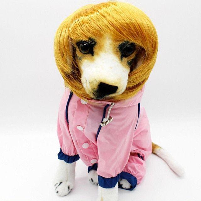HU Funny Pet Cat Dog Golden Hair Wig Pet Accessories Hat Chihuahua Headwear Bull Terrier Costume Halloween Pet Supplies