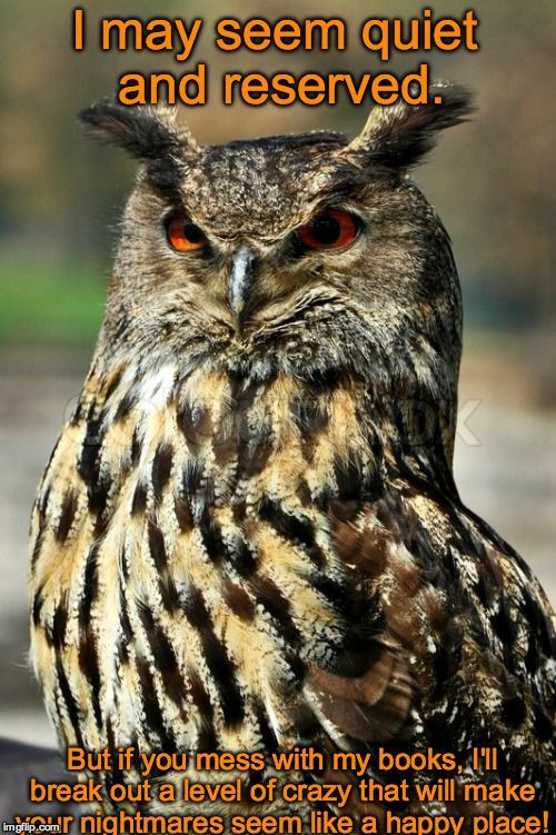 Featured Great horned owl Memes