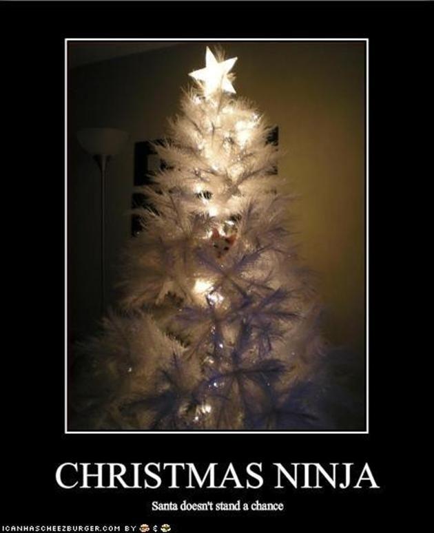 Vh funny christmas ninja cat