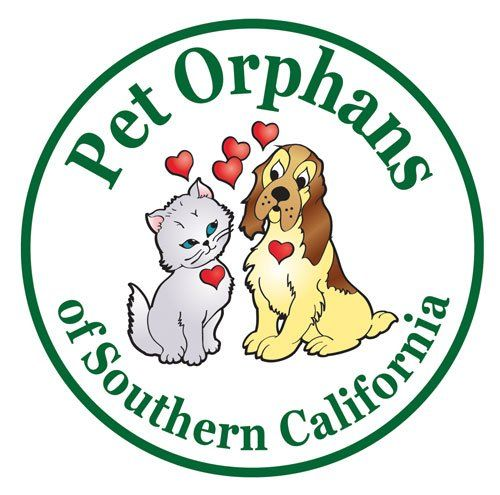 Pet Orphans of Southern California 37 s & 75 Reviews Pet Groomers 7720 Gloria Ave Van Nuys Van Nuys CA Phone Number Yelp
