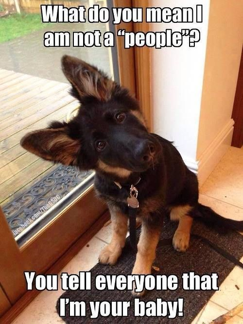 """What do you mean I am not a """"people"""" You tell everyone that I m your baby"""