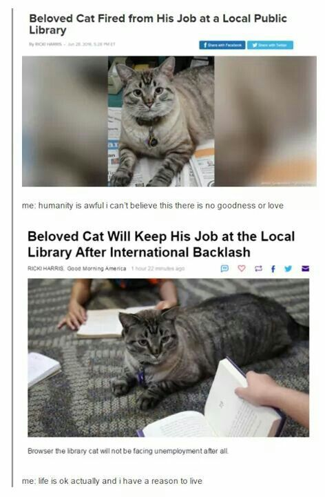 Ohhh how DARE they I know he got his job back but e on could they do such a thing Books and cats go to her like peanut butter and jam