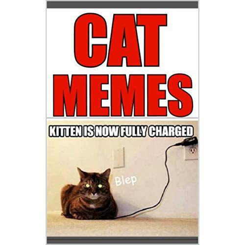 Memes Funny Cat Memes & More Seriously Dank & Cute Memes