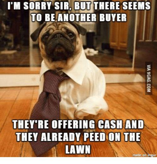 Real Estate Humor Meme