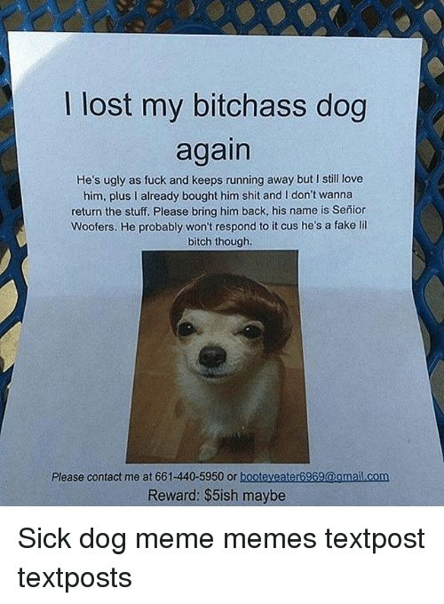 Bitch Fake and Love lost my bitchass dog again He s ugly as fuck