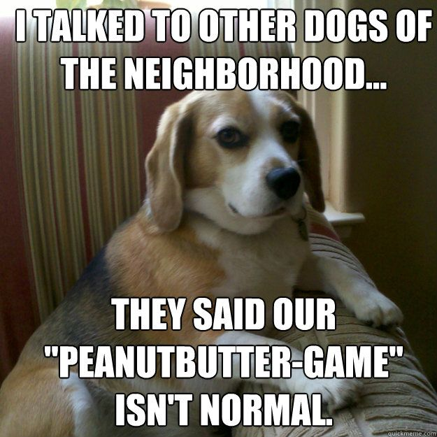 i talked to other dogs of the neighborhood they said our