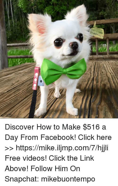 Memes Snapchat and Discover Discover How to Make $516 a Day From