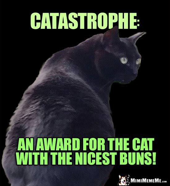 Funny Black Cat Says Catastrophe An award for the cat with the nicest buns