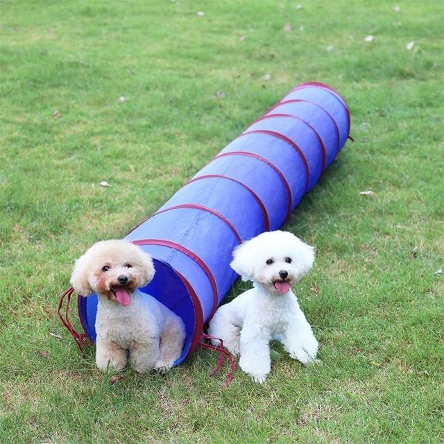 2M Long Cat Tunnel Funny Pet Cat Tunnel Dia 30cm Cat Play Tubes Collapsible Kitten Dog Toys Puppy Ferrets Rabbit Play Toys