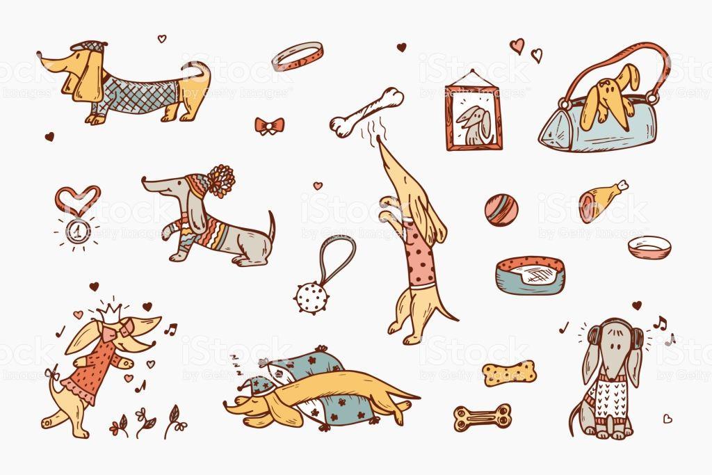 Funny Dachshund Dogs Hand Drawn Doodle Dog Vector Set Illustration