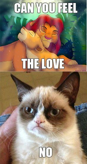 Grumpy Cat Grumpy Baby Gato Grumpy Grumpy Cat Humor Grumpy Kitty Grumpy
