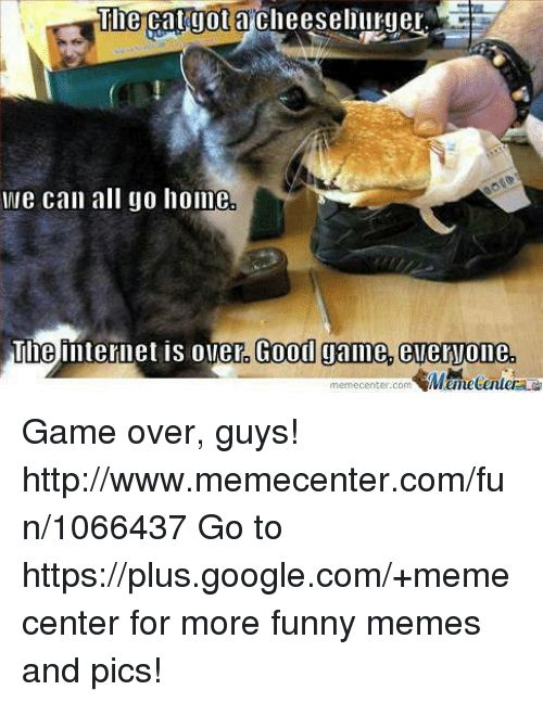 Memes 🤖 and Cat The cat yotacheeselillrmuer We can all go home The